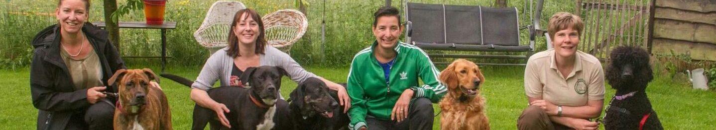 Topdogtrainingen zijn in heel Nederland beschikbaar